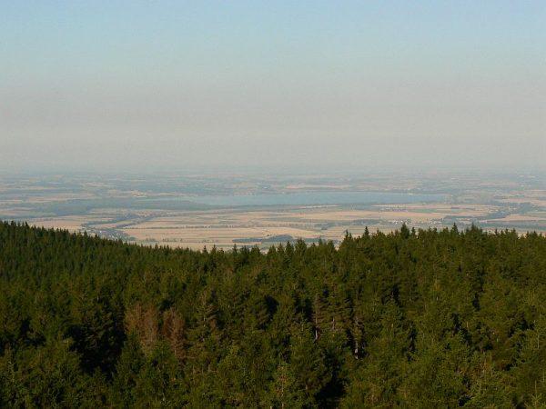 Borówkowa - wieża widokowa