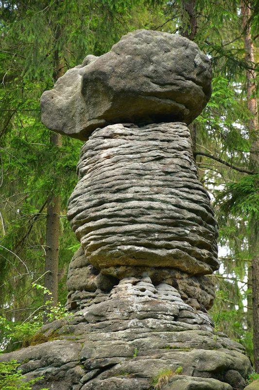 skalne-grzyby-w-zlotnie